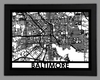 Baltimore Framed City Map
