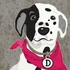 Barkley & Wagz - Dalmatian Canvas Wall Art