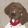 Barkley & Wagz - German Shorthaired Pointer Canvas Wall Art