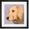 Barkley & Wagz - Retriever Framed Art Print