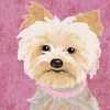 Barkley & Wagz - Yorkie Canvas Wall Art