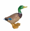 Barnyard Mallard Duck Drawer Pull