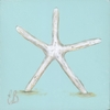 Beach Baby Small Starfish Canvas Reproduction