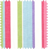 Beach Ball Stripe - Grade C