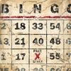 Bingo Canvas Wall Art