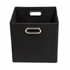 Black Canvas Storage Bin