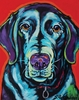 Black Labrador Dog Wall Art