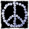Blue Peace Canvas Wall Art