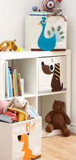 Boys Decor & Accessories