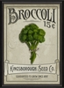 Broccoli Seeds Framed Wall Art