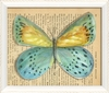 Butterfly 1 Framed Wall Art