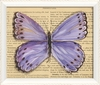 Butterfly 2 Framed Wall Art