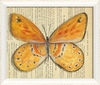 Butterfly 3 Framed Wall Art