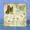 Butterfly Papillon Plaid I Canvas Reproduction