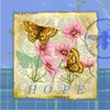 Butterfly Papillon Plaid III Canvas Reproduction