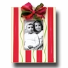 Candy Stripe Cardinal Picture Frame