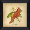 Cardinal Bird Framed Wall Art