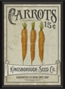 Carrots Seeds Framed Wall Art