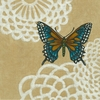 Cassiopeia Butterfly I Canvas Reproduction