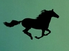 Chalkboard Running Horse Wall Decal