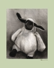 Charcoal Lamb - Sage Canvas Wall Art