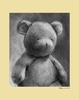 Charcoal Teddy - Yellow Canvas Wall Art