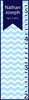 Chevron Flag Boy Personalized Growth Chart