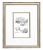 Classic Pooh VI Vintage English Framed Print