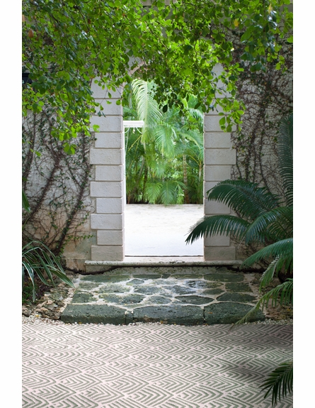 Cleo Indoor/Outdoor Rug in Moss