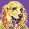 Cocker Spaniel Dog Pop Wall Art