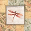 Collaged Dragonflies II Canvas Reproduction