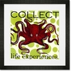 Collect Life Experiences Framed Art Print