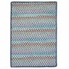Color Frenzy Rug in Big Blue