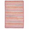 Color Frenzy Rug in Twinkle Pink