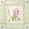Cottage Rose Canvas Wall Art - Right Leaning