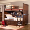 Covington Bunk Bed