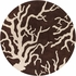 Cream Reef Branch Thomaspaul Rug