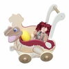 Dinosaur Kingdom Boys Push Cart