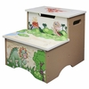 Dinosaur Kingdom Boys Stepstool with Storage