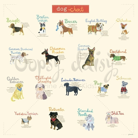 Dog Chart Canvas Wall Art
