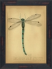 Dragonfly Framed Wall Art