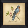 Eastern Bluebird Bird Framed Wall Art