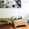 Echo Toddler Bed