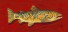 Egbert the Brown Trout Canvas Reproduction