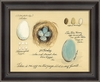 Egg Shells Framed Wall Art