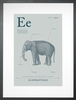 Elephant in Blue Grey Art Print