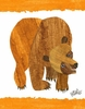 Eric Carle's Brown Bear Cover Canvas Wall Art