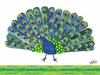 Eric Carle's Peacock Canvas Wall Art