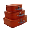 Euro Storage Suitcases - Orange with Blue Handles