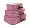Euro Storage Suitcases - Pink Blush with Brown Handles